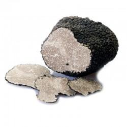 Scorzone - Schwarzer Sommertrüffel